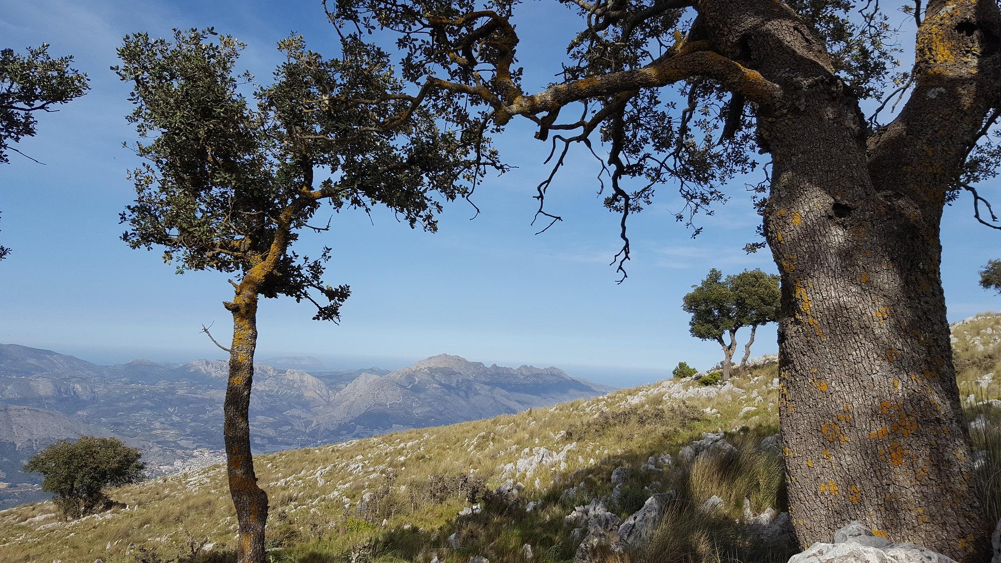 Vista a Sierra Bernia desde el Monte León Dormido
