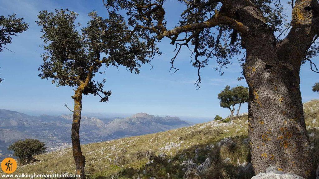 Sierra Bernia view from Mount León Dormido
