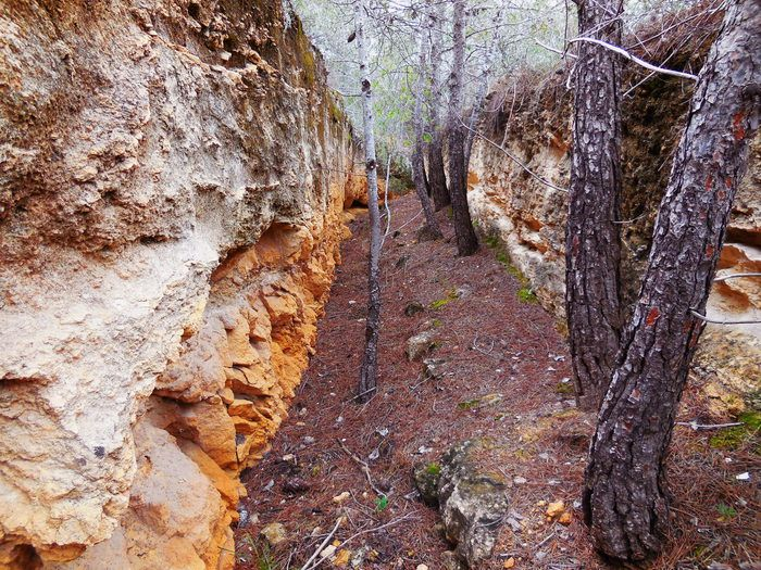 Spanish hiking routes to do in winter The Trenches of the Lost Valley