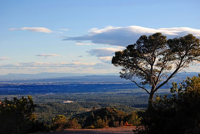 Valencian Community Natural Park Sierra Calderona