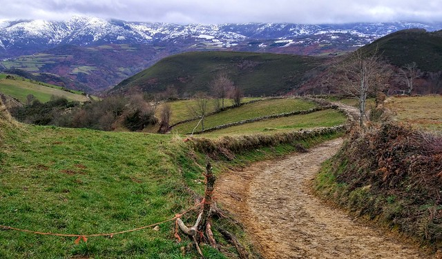 Hiking on the Camino de Santiago