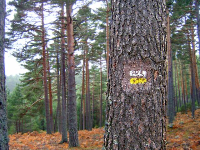Hiking trail through Castilla y León Sierra de Duruelo
