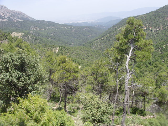 The Path of the Alquerías in Sierra, Murcia route and hiking