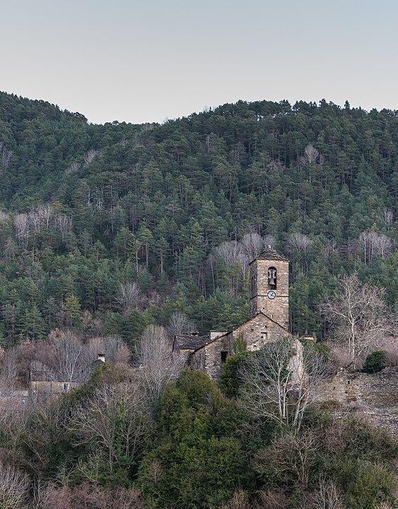 Bosque de la Pardina del Señor