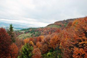 senderismo Francia otoño