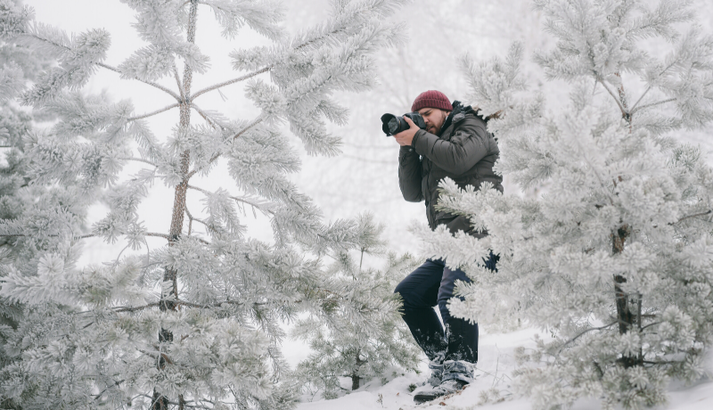 how to take professional photos in nature