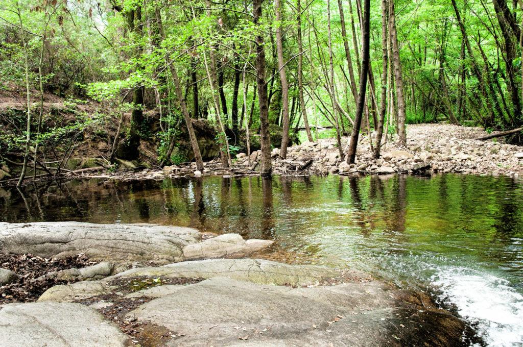 Parque de Gualba Montseny