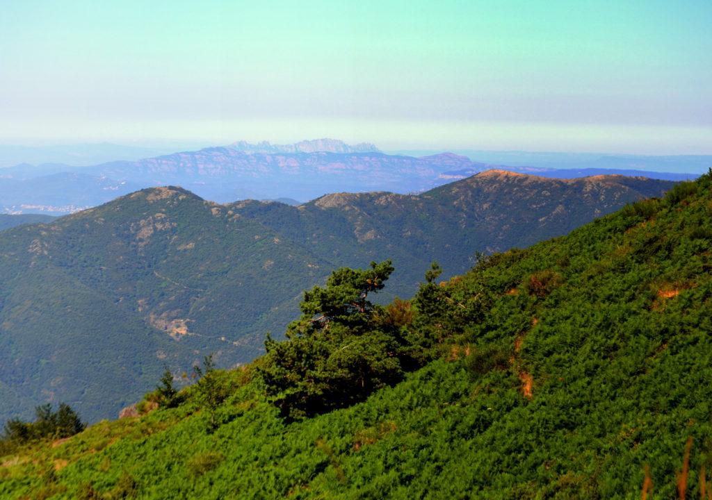 Cima Turó de l'Home Montseny